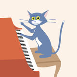 Cat plays piano Royalty Free Stock Photo