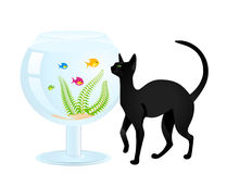 Cat plays with a small fish Royalty Free Stock Images