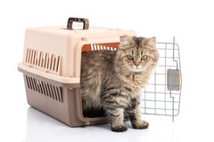 Cat ponibcctyc vk pet carrier isolated on white background Stock Images