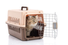 Cat ponibcctyc vk pet carrier isolated on white background Stock Image