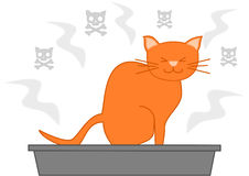 Cat poop in the litter box cartoon illustration Stock Photo