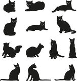 Cat, portrait, graphic image, black. Cats black image in various positions Royalty Free Stock Photos