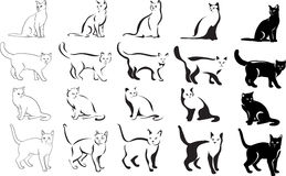 Cat, portrait, graphic image, black. Cats black image in various positions Stock Images
