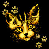 Cat Portrait with Paws Prints Stock Images