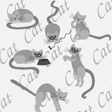 Cat posing at home. Cat posing at grey background with the word CAT royalty free illustration