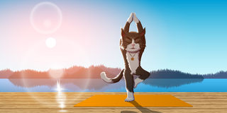 Cat practice yoga. Picture of a cat performing vrikshasana with lake, mountains and sunrise on background, yoga and meditation concept stock illustration