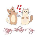 Cat present mouse. Happy Valentine's Day. Stock Photos