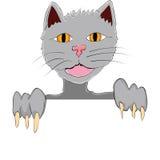 Cat presentation Royalty Free Stock Photos