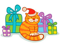 Cat and presents Stock Image