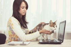 The cat prevents the girl. From working at the computer Royalty Free Stock Photos