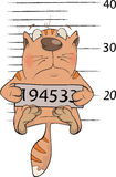 Cat the prisoner. Criminal mug shot. Cartoon. Cat the criminal with the tablet with number stock illustration