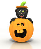 Cat in a Pumpkin Stock Images