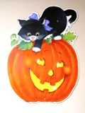 A cat & pumpkin Royalty Free Stock Photos