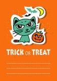 Cat With Pumpkin Fotografia Stock Libera da Diritti