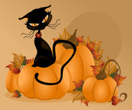 Cat Pumpkin Background. Illustration of a fall background with pumpkins with a cat sitting on top vector illustration
