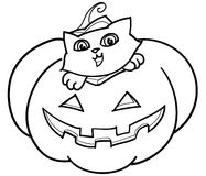 Cat and pumpkin bw Royalty Free Stock Photo