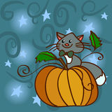 Cat on a pumpkin at the night sky with stars. For   invitation Stock Image