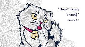 Cat with quotes in floral background doodle for adult stress release coloring page. Hand drawn cat doodle for adult stress release coloring page royalty free illustration