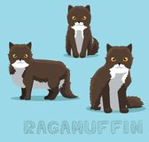 Cat Ragamuffin Cartoon Vector Illustration. Animal Character EPS10 File Format Stock Photo