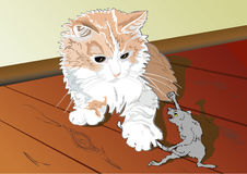 A cat and a rat. A humorous picture in which a cat caught an old rat and the rat is trying to release it's tail from cat's claws Royalty Free Stock Photos