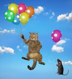 Cat and rat flying with balloons