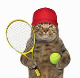 Cat with tennis racket. The cat in a red cap is holding a tennis racket and a ball. White background royalty free stock photos