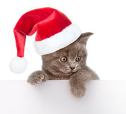 Cat in red christmas hat peeking from behind empty board. together. isolated on white Stock Photos