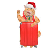 Cat in red Christmas hat with a suitcase. Royalty Free Stock Images