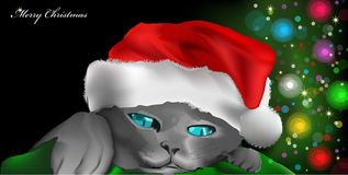 Cat with red New Year's cap. Vector illustration Stock Image