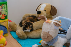 Cat is relaxing on plush dog Royalty Free Stock Photography