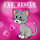 Cat Rescue Indicates Pets Saving And Recovering. Cat Rescue Showing Save Recovering And Felines Royalty Free Stock Images