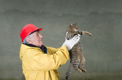 Cat rescue. Old man in safety suit holds cat with his arms Stock Photos