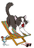 Cat resting in a lounge chair. Illustration,color,drawing,isolated on a white Stock Photography