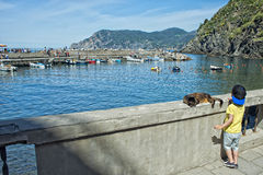 Cat while resting in Vernazza harbor Stock Photo