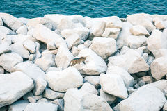 Cat on rocks, next by the sea Royalty Free Stock Photography