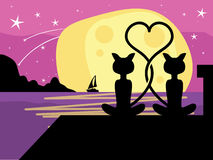 Cat romance Royalty Free Stock Image