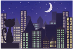 Cat on the roof of the city. Cat on the roof of the night city Royalty Free Stock Image