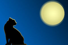 Cat on roofs. And moon in the night Stock Image