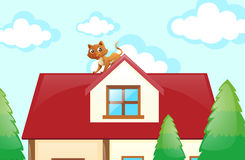 Cat on the rooftop Royalty Free Stock Images