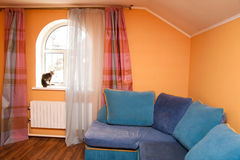 Cat in room interior Royalty Free Stock Photos