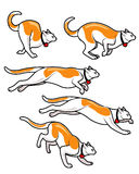 Cat Runinng Fast Animation Sprite Royalty Free Stock Photography