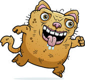 Cat Running fea Imagenes de archivo