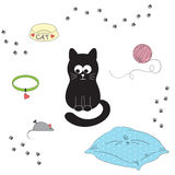 Cat's accessories Royalty Free Stock Images