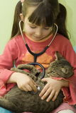 Cat's doctor. Girl have fun with stethoscope and cat stock images