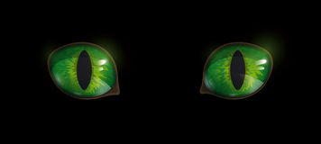 Cat's eyes. Green glossy cat's eyes on black background. Vector EPS10 Stock Photo