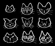 Cats faces. Various cats faces cartoon vector illustration