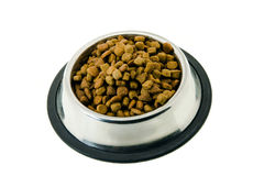 The cat's forage Royalty Free Stock Photography