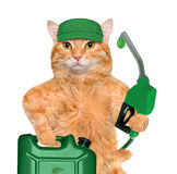 Cat's hand using fuel nozzle with a drop of eco-friendly fuel. Royalty Free Stock Photography