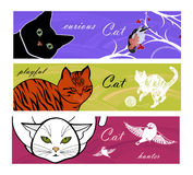 Cat's life background Royalty Free Stock Images