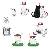 Cat's life cycle. From baby to get old vector illustration